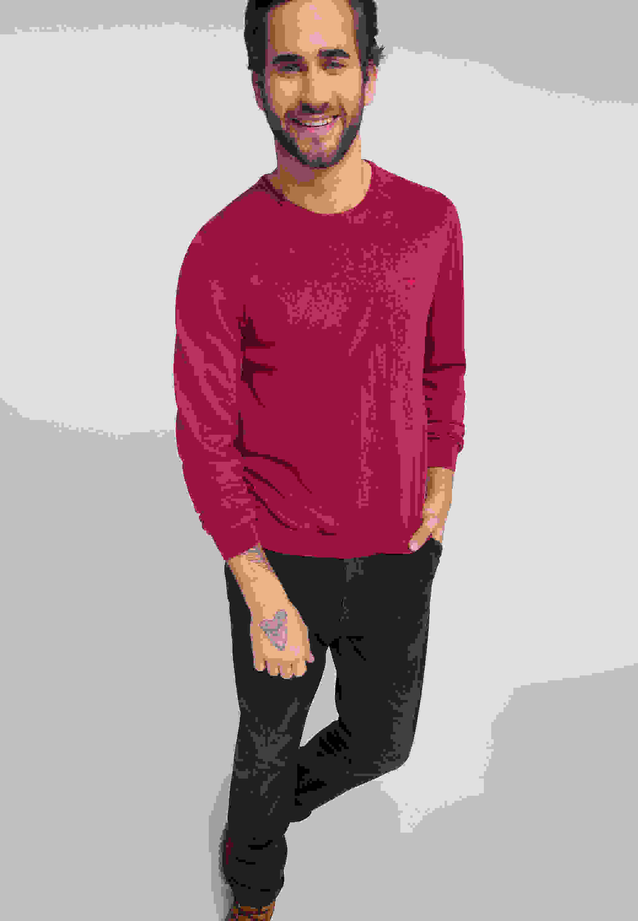 Sweater Emil C Basic
