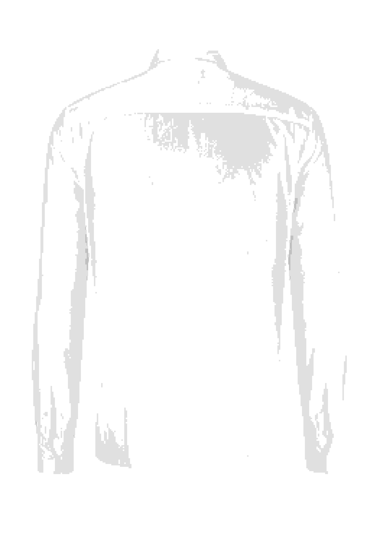 Hemd Hemd