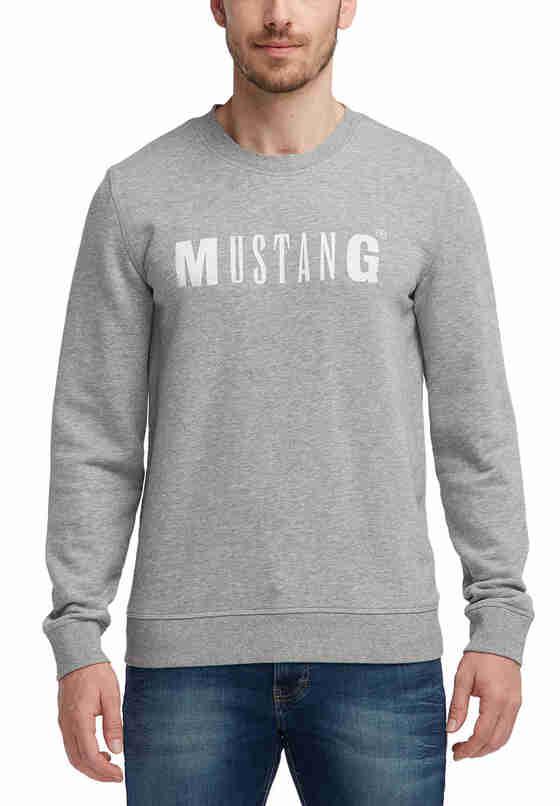 Sweatshirt Logo-Sweatshirt, Grau, model